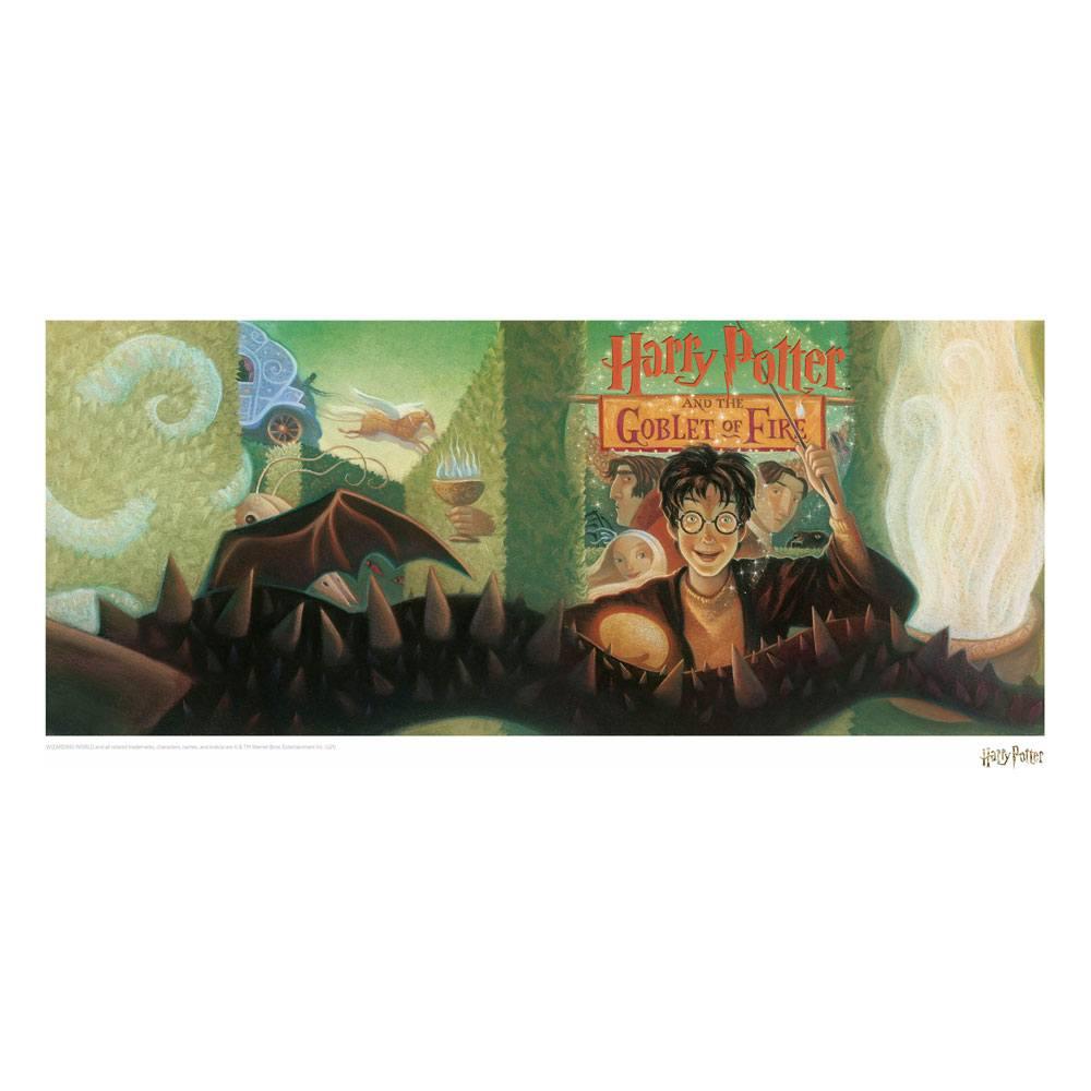 Photo du produit HARRY POTTER LITHOGRAPHIE GOBLET OF FIRE BOOK COVER ARTWORK LIMITED EDITION 42 X 30 CM