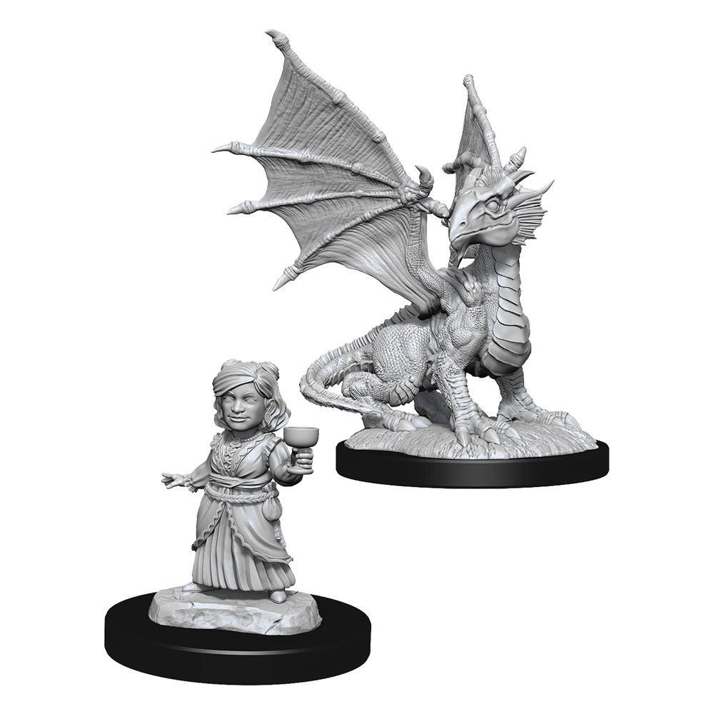 Photo du produit D&D Nolzur's Marvelous Miniatures miniatures à peindre Silver Dragon Wyrmling & Female Hal