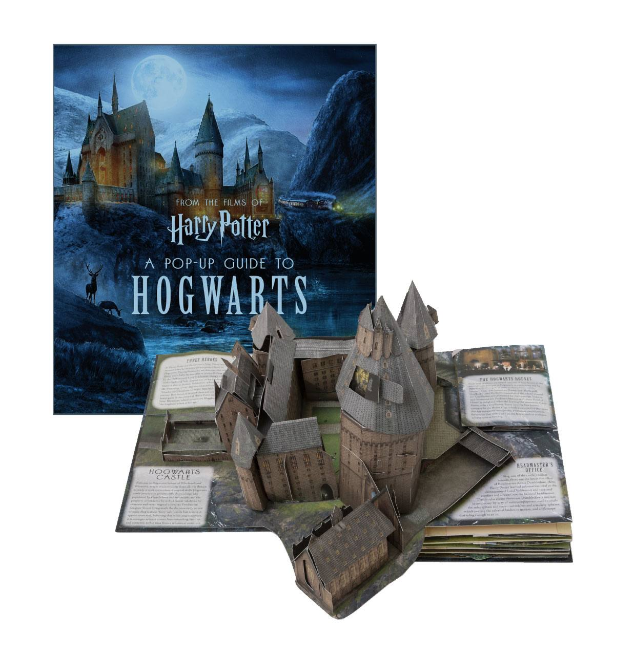 Harry Potter Livre Anime 3d A Pop Up Guide To Hogwarts Anglais