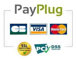 Payplug, société spécialisée dans le paiement en ligne