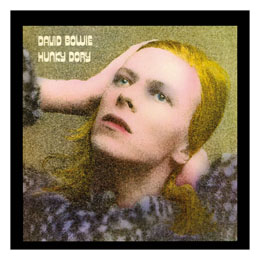 DAVID BOWIE ROCK SAWS PUZZLE HUNKY DORY (500 PIÈCES)