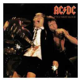 AC/DC ROCK SAWS PUZZLE IF YOU WANT BLOOD (500 PIÈCES)