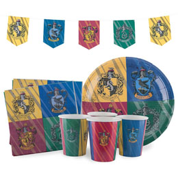 HARRY POTTER KIT ANNIVERSAIRE HOGWARTS