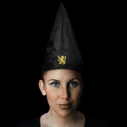Photo du produit Harry Potter chapeau Gryffindor 32 cm Photo 2