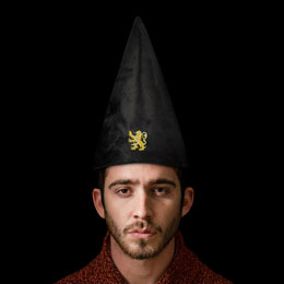 Photo du produit Harry Potter chapeau Gryffindor 32 cm Photo 3