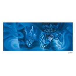 HARRY POTTER LITHOGRAPHIE ORDER OF THE PHOENIX BOOK COVER ARTWORK LIMITED EDITION 42 X 30 CM