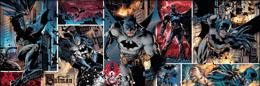 DC COMICS PANORAMA PUZZLE BATMAN (1000 PIÈCES)