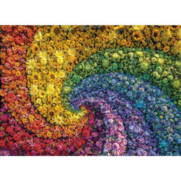 Photo du produit PUZZLE SPIRALES 1000 PIECES Photo 1