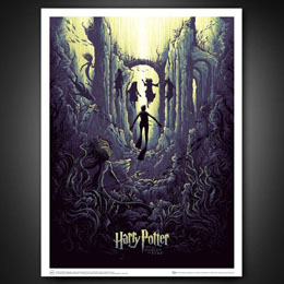 LITHOGRAPHIE HARRY POTTER AND THE WATERY CHALLENGE 61 X 46 CM