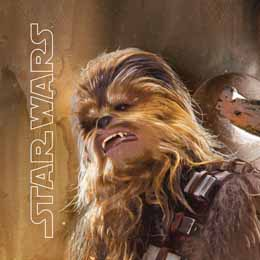 COUSSIN STAR WARS EPISODE VII THE FORCE AWAKENS