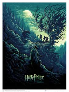 LITHOGRAPHIE HARRY POTTER & THE SHADOW OF THE WEREWOLF
