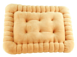 BISCUIT COUSSIN 40 CM